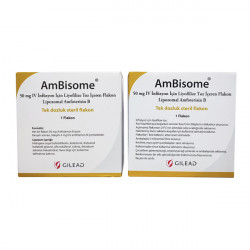 Купить Амбизом (Ambisome) пор. для инъекций 50мг №1 в Курске