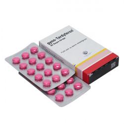 Купить Гино-Тардиферон (Gyno-Tardyferon) таблетки п/о 80 0,35мг №30 в Курске